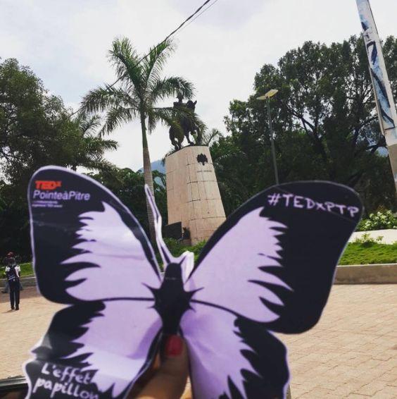 #Effetpapillon en Haïti - TEDxPointeàPItre