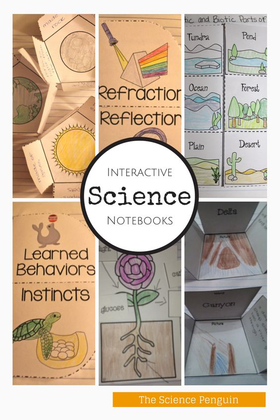 Thinking about starting Interactive Science Notebooks? (Videos, Photos, Ideas, Tips, and Paid Resources)