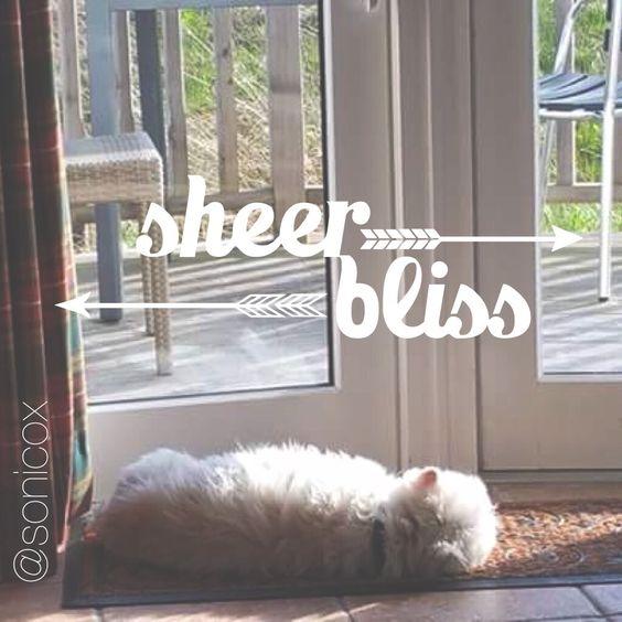 Sheer Bliss @sonicox