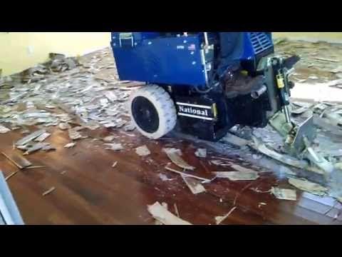 L2 Floor Care Inc Glued Down Wood With Proflex Removal Machine Youtube Flooring Wood Wood Floors