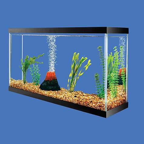 Aquarium Air Pump Size Calculator Aquarium Air Pump Aquarium 3 Gallon Fish Tank