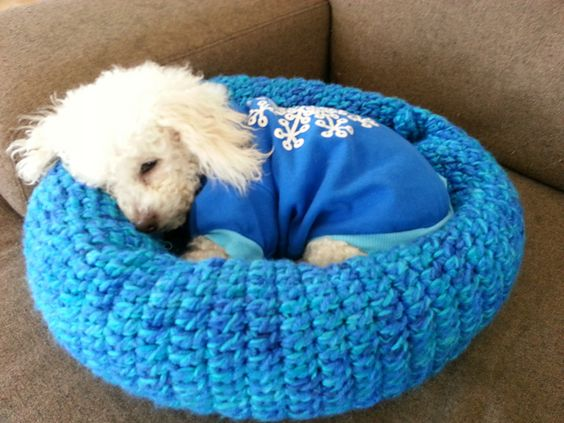 Crochet Patterns Pet Beds : ... pets small crochet crochet pet beds knitting for pets crochet dog