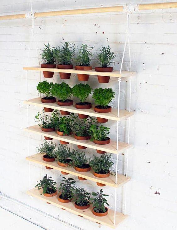 hanging shelves near the white wall #gardenIdeas #garden #gardening #plants #homeDecor #indoor #shelves