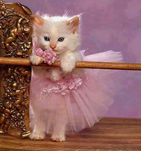 Que linda bailarina