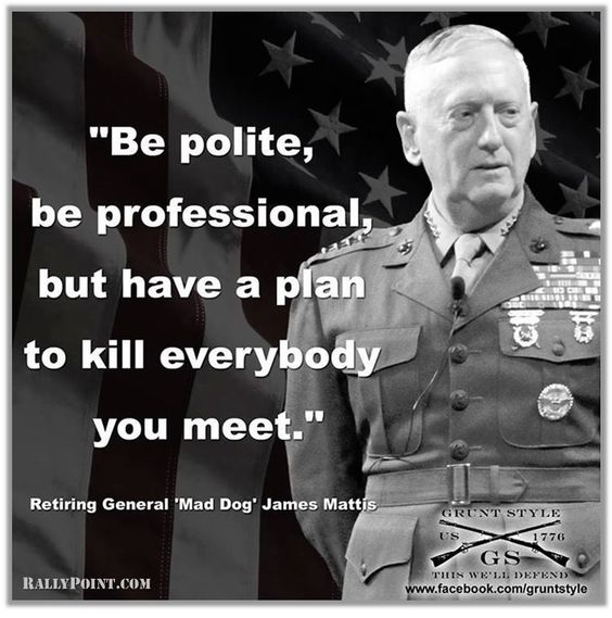 Image result for general mattis