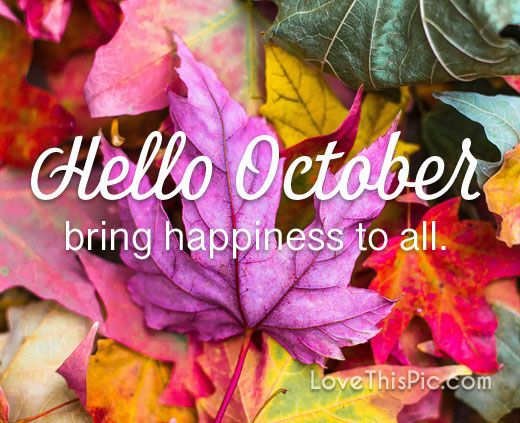 Bring happiness to all pumpkin october hello october hello october quotes  october quotes welcome october | Bring happiness, October pictures