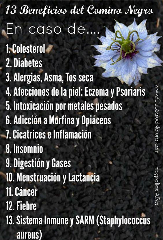 13 Beneficios de las Semillas de Comino Negro - Club Salud Natural #comino #negro