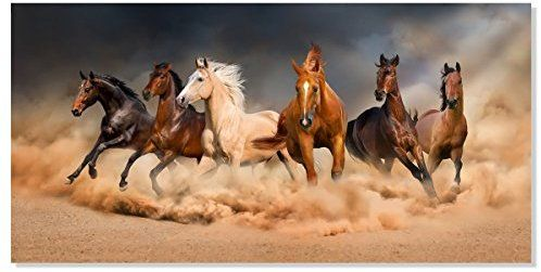 Amazon Com Inzlove Famous Running Horse Canvas Painting Print Modern African Landscape Wild Animal A Wild Horses Running Horse Wallpaper Horse Canvas Painting
