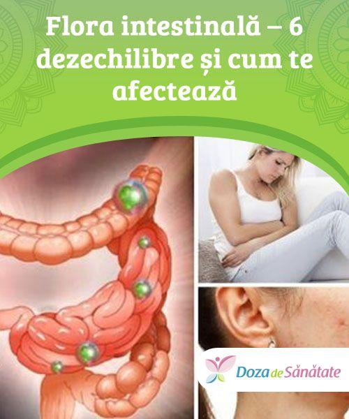 sănătate intestinală pentru pierderea în greutate