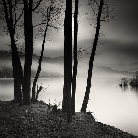 Morning light I by Pierre Pellegrini