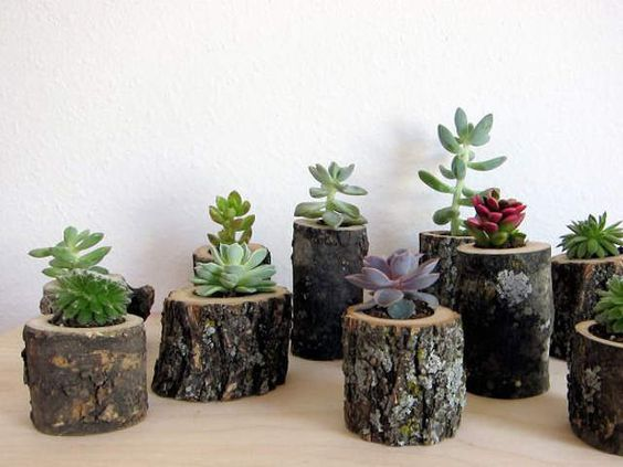 15 ideas decorativas de madera plantas y jard n macetas for Bricolaje y jardin