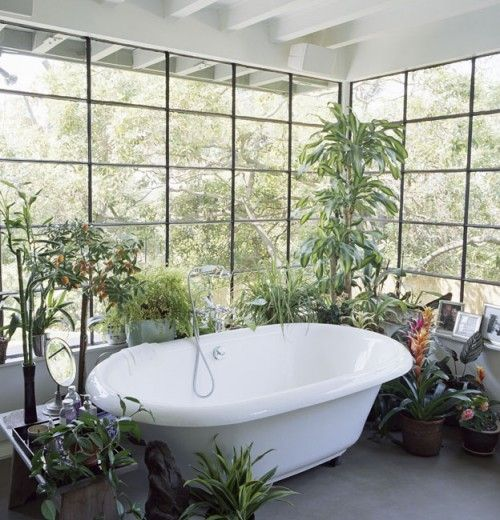plants around the tub For the Home Pinterest Bathrooms decor