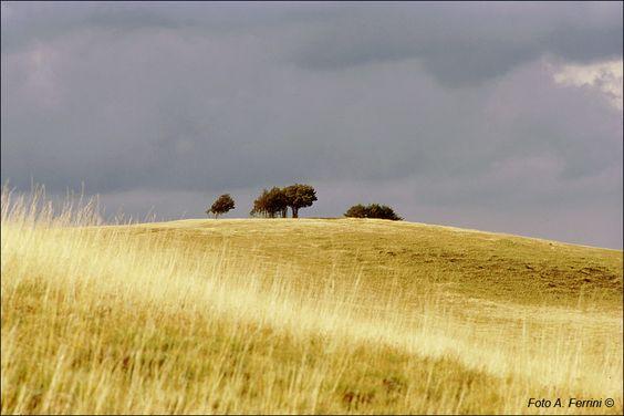 #Pratmoagno, provincia di Arezzo, la campagna spazzata dal vento prima del temporale. #Italy #Tuscany #placestogo