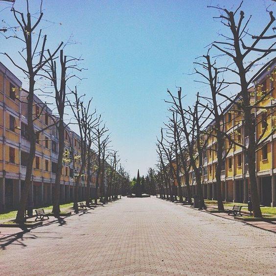 """@Eugi Angelini  A volte fuori dal centro storico di Bologna si trovano posti incredibili e inaspettati... Ecco a voi le """"case gialle"""" di Via Mattei (Piazza dei Colori)... un fascino """"geometrico""""... decisamente diverso dal solito!"""