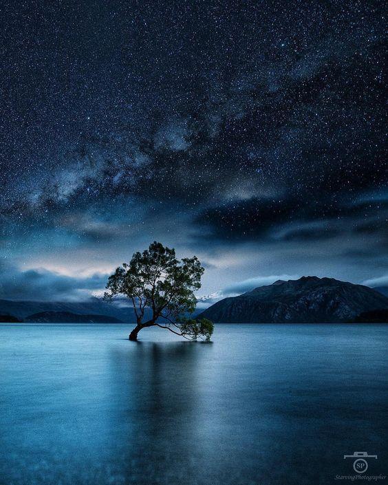 Starry night over the Wanaka tree 🌌Photo by @starvingphotographerExplore. Share. Inspir