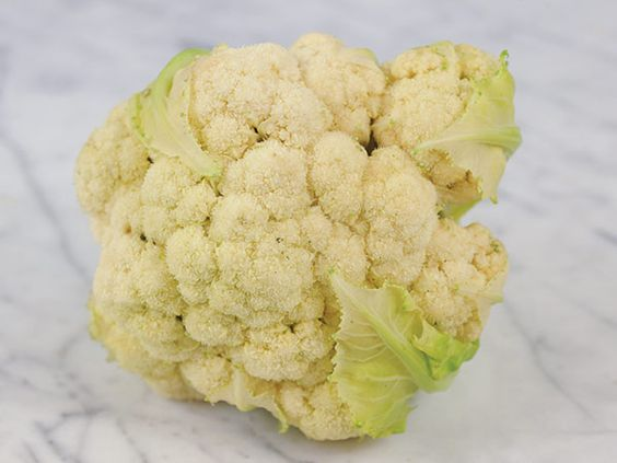 55 days Erfurter Cauliflower (Also known as Snowball A) Great yields of snow-white heads that reach 6 inches across. Self-blanching type that is very early and reliable, even in dry conditions. Fine-grained curd is mild-flavored.
