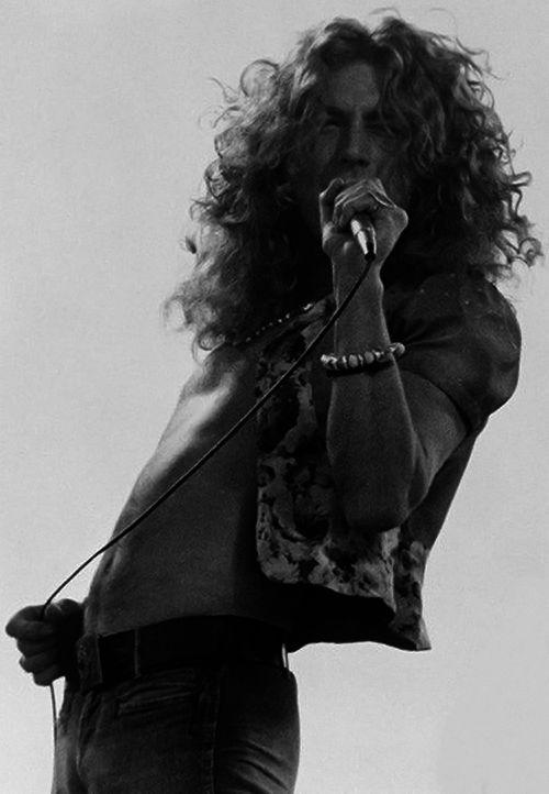 Robert Plant.......................                                                                                                                                                      More