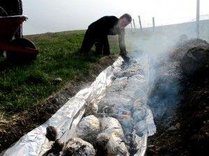Marenering á grillkjöti