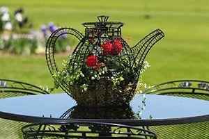 teapot, topiary