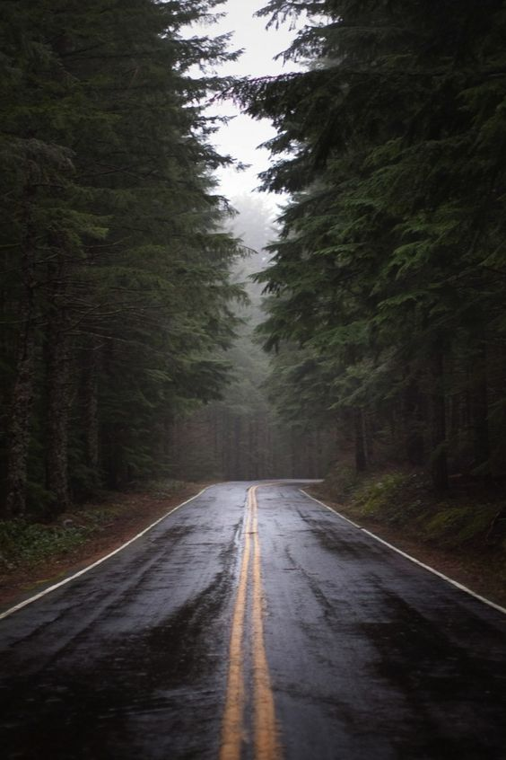 Imagini pentru autumn road air view