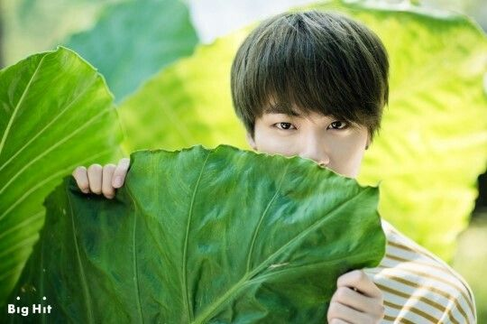 Jin Summer Vacation