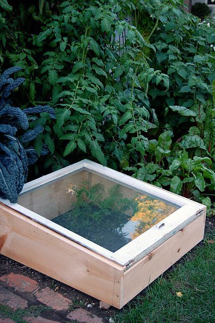 How to build a cold frame Cold frame Winter garden and