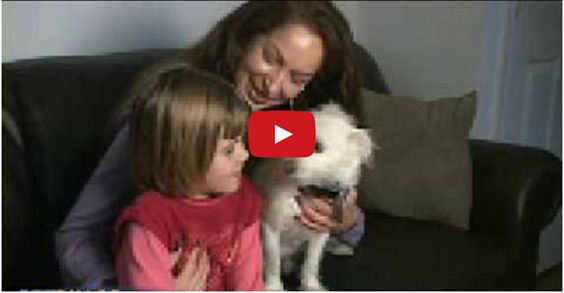 Rescued Dog Saves Little Girl's Life!