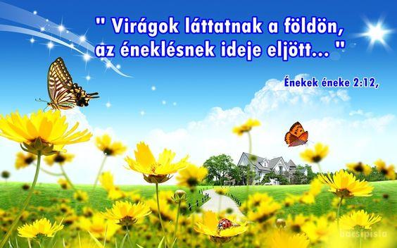 """""""Virágok láttatnak a földön,  az éneklésnek ideje eljött,  és a gerlicének szava hallatik a mi földünkön.""""  (Énekek émeke 2:12,)"""
