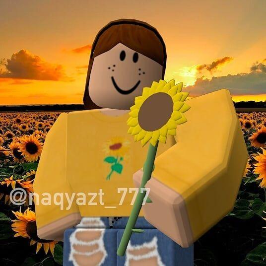 Sunflower Roblox Gfx