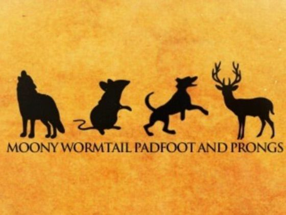 What Will Your Animagus Be In 2020 The Marauders Harry Potter Collection Harry Potter World