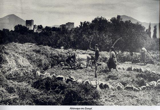 Αλώνισμα στο Σταυρί 1930