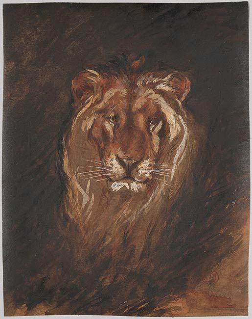 Eugène Delacroix | Head of a Lion | Drawings Online | The Morgan Library & Museum