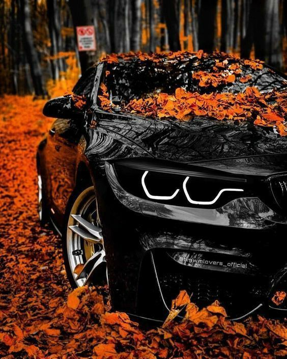 With older iphone models without 3d touch, they can be used as static wallpapers. Pin On Iphone Wallpaper And Lockscreen Sports Cars Lamborghini Bmw New Cars Luxury Car Interior