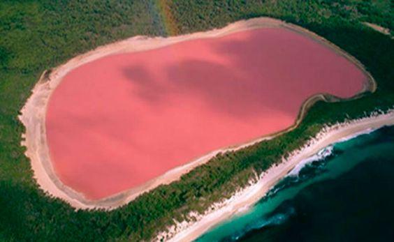 Conozca el extraño fenómeno del lago que tiene aguas color rosa