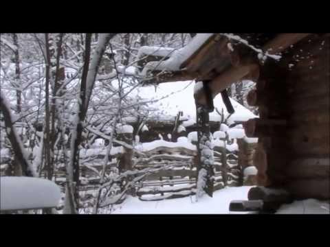 Январская вьюга