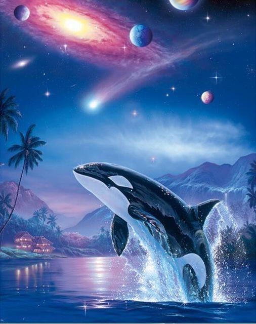 5d Diamond Painting Orca Galaxy Kit Whale Art Orca Art Whale