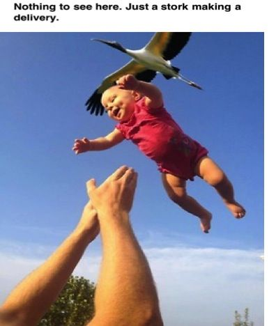 Proof of where babies come from.