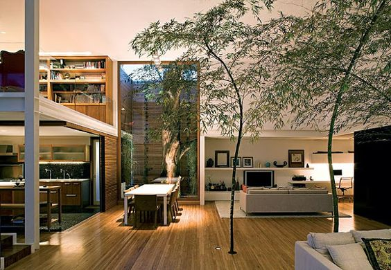 Na Arquitetura e Design de Interiores: A Árvore como parte da decoração