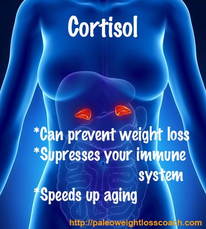 Cortisol And Weight Gain #paleo #weight loss