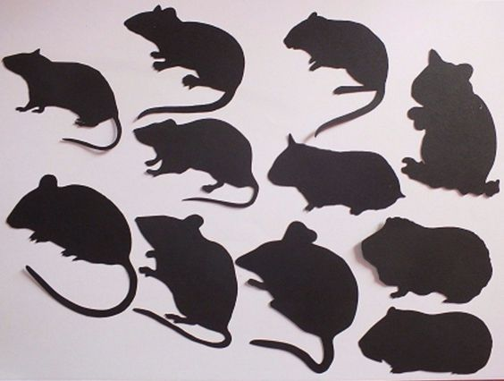9 Rodents Mouse Rat Guinea Pig Hamster Gerbil Die Cuts Card Making