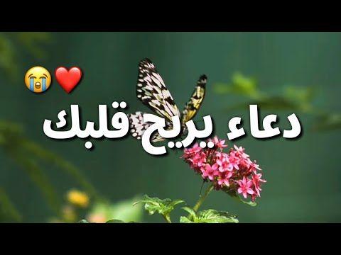 يا رب دعاء يريح القلب أجمل حالات واتس أدعية دينية مقاطع انستغرام استوريات دينية Youtube Quran Book Quran Recitation Quran