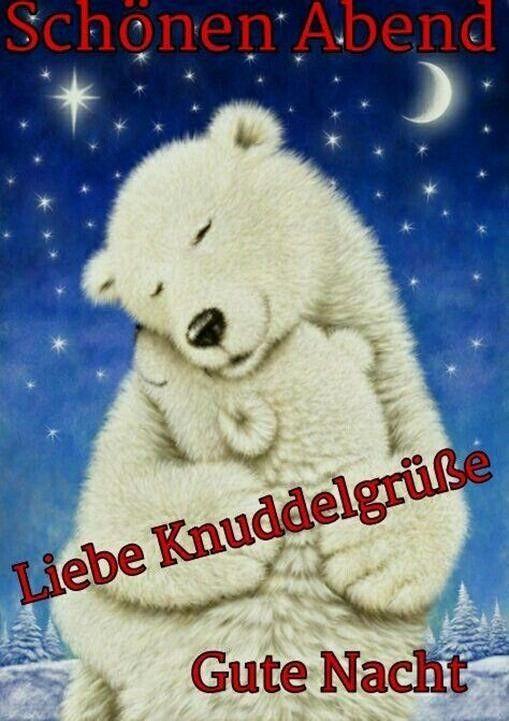 Gute Nacht Bilder Eisbär Gutenachtbildereisbär Gutennach