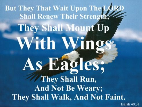 Isaiah 40 31 Kjv Quot But They That Wait Upon The Lord Shall Renew Their Strength They Shall