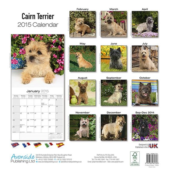 Dog Calendar Ideas : Cairn terriers wall calendars and on pinterest