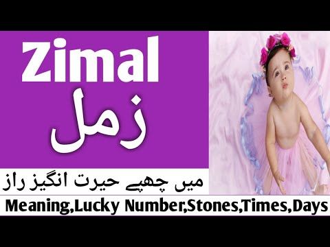 Zimal Name Meaning In Urdu Zimal Naam Ka Islamic Name Zimal Meaning In Urdu Nameurdu Tv Youtube Names With Meaning Meant To Be Names