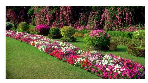 Decoracion de jardines en casa decoraci n y estilo en - Jardin en casa ...