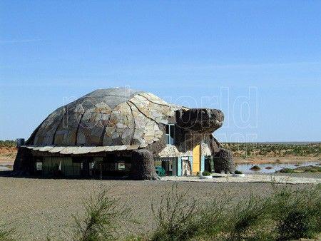 Turtle cafe in the tourist camp Bayan zag. Gurvansaikhan national park ...