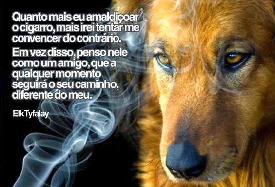Um amigo que seguirá seu caminho. No Dia Mundial sem Tabaco, esta série de postagens retrata com verdade e humor os dilemas de um fumante assumido, consciente dos males do cigarro mas sem nenhuma vontade de parar. VEJA A SÉRIE COMPLETA EM: http://goo.gl/YFau31
