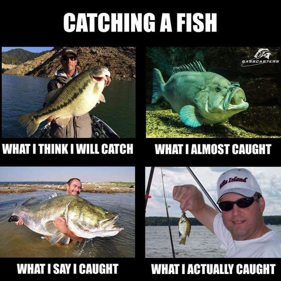 Top 30 Hilarious Husband Fishing Memes Fishing Memes Funny Fishing Memes Fishing Jokes