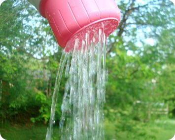 Great idea for re-purposing laundry detergent bottle into watering can